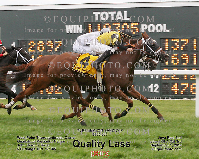 Quality Lass #4 with John Bisono riding won the $200,000 Turf Amazon Handicap at Parx Racing in Bensalem, Pennsylvania September 1, 2014 Photo by Barbara Weidl / EQUI-PHOTO
