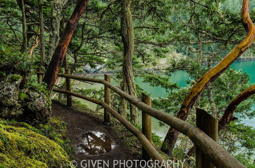 Trail, Deception Pass State Park, Washington