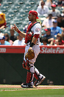 05/06/12 Anaheim, CA: Los Angeles Angels catcher Chris Iannetta #17 during an MLB game against the Toronto Blue Jays played at Angel stadium. The Angels defeated the Blue Jays 4-3