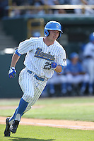 Brett Stephens (23) of the UCLA Bruins runs the bases during a game against the Arizona Wildcats at Jackie Robinson Stadium on May 16, 2015 in Los Angeles, California. UCLA defeated Arizona, 6-0. (Larry Goren/Four Seam Images)