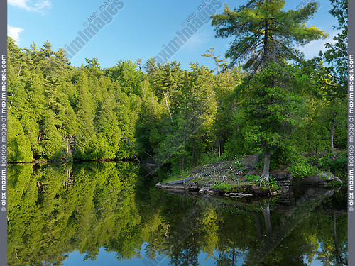 Eramosa river nature scenery. Rockwood Conservation Area Guelph Ontario Canada.