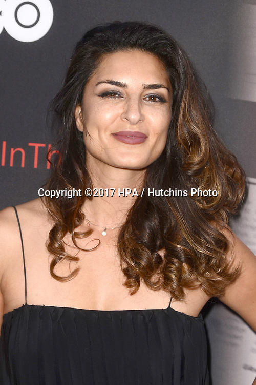 """LOS ANGELES - MAY 17:  Salome Azizi at the """"If You're Not In The Obit, Eat Breakfast"""" Premiere at the Samuel Goldwyn Theater on May 17, 2017 in Beverly Hills, CA"""