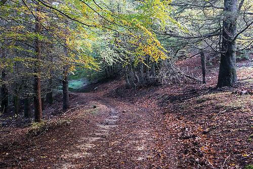 Sicile, Italie, Oct 2015. Parc Naturel de Madonies.