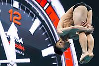 Training session. <br /> Diving 13/07/2017 <br /> XVII FINA World Championships Aquatics<br /> Duna Arena Budapest Hungary  <br /> Photo Andrea Staccioli/Deepbluemedia/Insidefoto