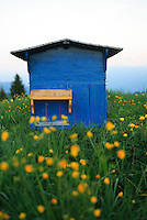 An old painted hive in Haute-Savoie.