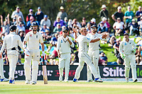 Neil Wagner and Kane Williamson of the Black Caps think they have a wicket of Mark Stoneman of England during Day 3 of the Second International Cricket Test match, New Zealand V England, Hagley Oval, Christchurch, New Zealand, 1st April 2018.Copyright photo: John Davidson / www.photosport.nz
