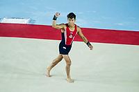 Yul Moldauer (USA)