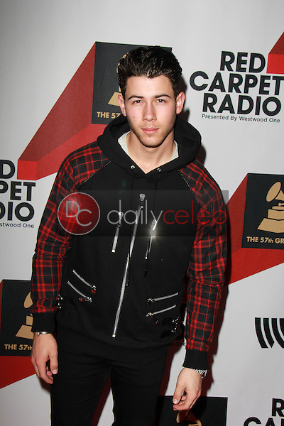 Nick Jonas<br />
