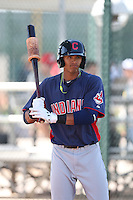 Erik Gonzalez #7 of the Cleveland Indians during a Minor League Spring Training Game against the Cincinnati Reds at the Cincinnati Reds Spring Training Complex on March 25, 2014 in Goodyear, Arizona. (Larry Goren/Four Seam Images)