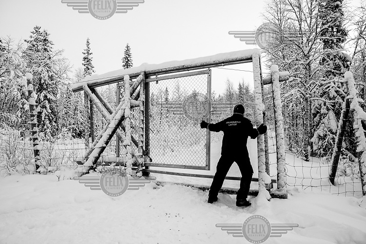 The second in charge of the checkpoint in Salla, Lieutenant Matti Pekkala, closes the fence a few metres from the Russian-Finnish border, built to avoid wild animals crossing from one side to the other.