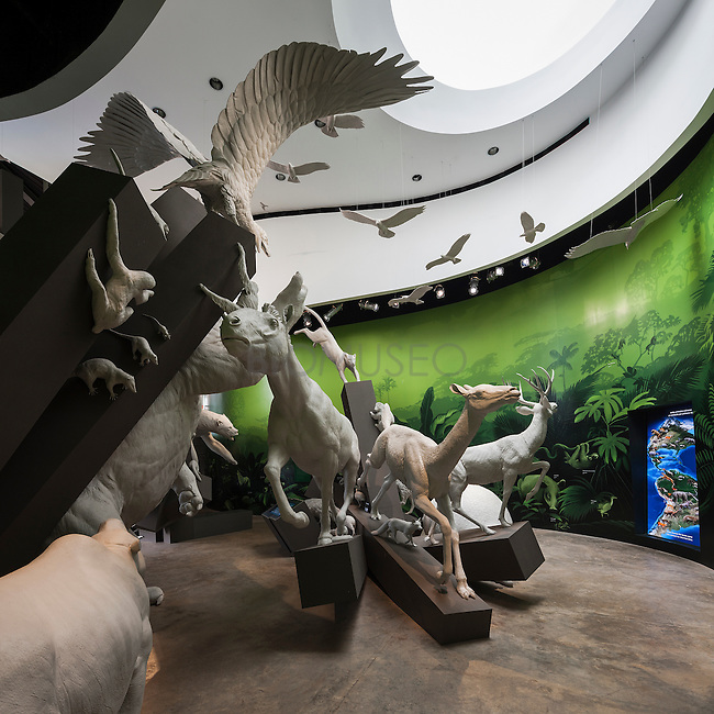 Galer&iacute;a El Gran Intercambio.<br /> World's Collide gallery. Biomuseo, Panam&aacute; 2014