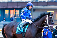 OZONE PARK, NEW YORK: MAR 10: Enticed, #9, ridden by Junior Alvarado, wins the Gotham  Stakes for 3 year olds, Aqueduct  Racetrack, on March 10, 2018 in Ozone Park, New York. ( Photo by Sue Kawczynski/Eclipse Sportswire/Getty Images)