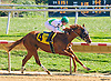Game Winning Shot winning at Delaware Park on 10/15/16