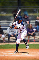 FDU-Florham Devils catcher Diego Espinosa (31) at bat during the first game of a doubleheader against the Farmingdale State Rams on March 15, 2017 at Lake Myrtle Park in Auburndale, Florida.  Farmingdale defeated FDU-Florham 6-3.  (Mike Janes/Four Seam Images)