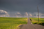 Storm over a country road in Washington's Palouse