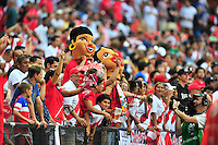Peruvian fans came out in droves to cheer on their team. USA defeated Peru 2-1 during a Friendly Match at the RFK Stadium in Washington, D.C. on Friday, September 4, 2015.  Alan P. Santos/DC Sports BoxBethesda Spirti - Soccer Tournament in Ellicott, MD on August 29-30th.  www.alanpsantos.com