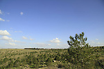 Israel, a view east from Alexandroni brigade memorial in Koach forest