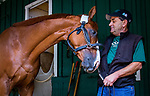 BALTIMORE, MD - MAY 16:  Justify shows his affection for assistant trainer Jimmy Barnes at Pimlico Racecourse on May 16, 2018 in Baltimore, Maryland. (Photo by Alex Evers/Eclipse Sportswire/Getty Images)