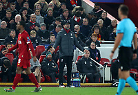 5th November 2019; Anfield, Liverpool, Merseyside, England; UEFA Champions League Football, Liverpool versus Genk; Liverpool manager Jurgen Klopp reacts to the action from the touchline - Editorial Use