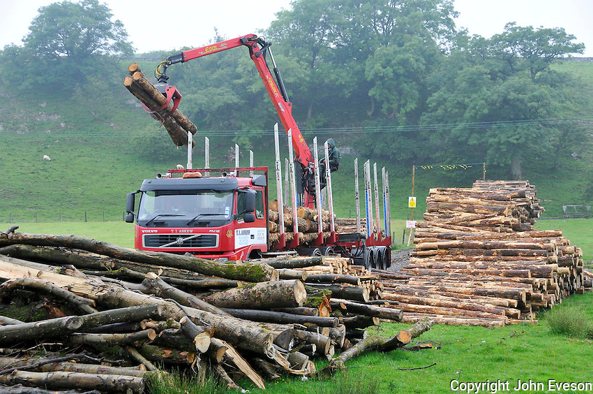 Loading logs on to a trailer ready for chipping and burning in a boiler, Whitewell, Lancashire.