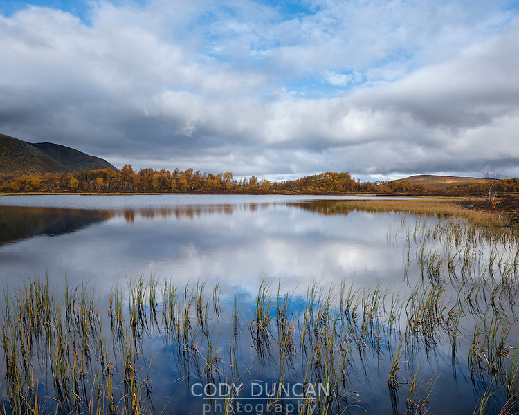 Small mountain lake in autumn, near Tärnasjön, Kungsleden trail, Lapland, Sweden
