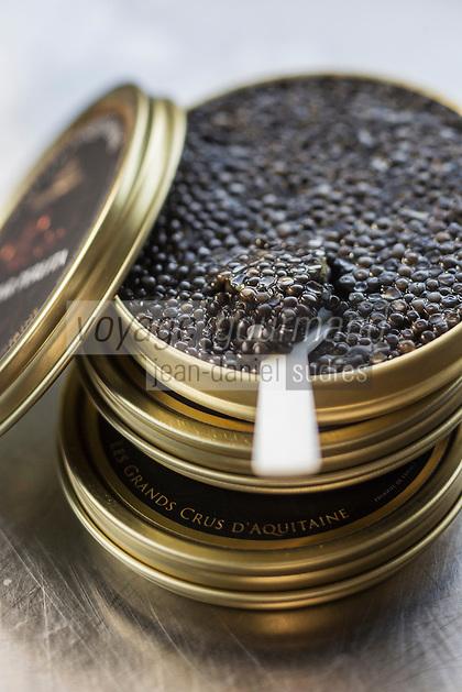 France, Gironde (33),Bassin d'Arcachon,  Le Teich:  L'Esturgeonnière, caviar d'Aquitaine <br />  //  France, Gironde, Bassin d'Arcachon, Le Teich: The Esturgeonnière, Aquitaine caviar