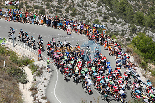 The peloton led by Team Sky in action during Stage 7 of the 2017 La Vuelta, running 207km from Ll&iacute;ria-Cuenca, Spain. 25th August 2017.<br /> Picture: Unipublic/&copy;photogomezsport | Cyclefile<br /> <br /> <br /> All photos usage must carry mandatory copyright credit (&copy; Cyclefile | Unipublic/&copy;photogomezsport)