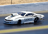 Jul. 28, 2013; Sonoma, CA, USA: NHRA pro stock driver Shane Gray during the Sonoma Nationals at Sonoma Raceway. Mandatory Credit: Mark J. Rebilas-