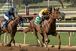 ARCADIA, CA FEBRUARY 10: #5 Kanthaka, ridden by Flavien Prat, battles #3 Nero, ridden by Victor Espinoza, in the stretch of the San Vicente Stakes (Grade ll) on February 10, 2018 at Santa Anita Park in Arcadia, CA. (Photo by Casey Phillips/ Eclipse Sportswire/ Getty Images)