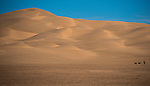 IMPERIAL SAND DUNES-  FEBRUARY 2:  Landscape shots near the Imperial Sand Dunes.  (Photo by Donald Miralle) *** Local Caption ***