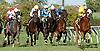 Promised Destiny winning at Delaware Park on 9/4/13