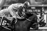ARCADIA, CA  JUNE 16: #6 Ollie's Candy, ridden by Kent Desormeaux, and #1 Thirteen Squared, ridden by Tyler Baze, after crossing the wire in the Summertime Oaks (Grade ll) on June 16, 2018 at Santa Anita Park in Arcadia, CA. (Photo by Casey Phillips/Eclipse Sportswire/Getty Images)