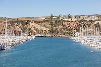 Boats Docked at the Dana Point Harbor in Orange County California