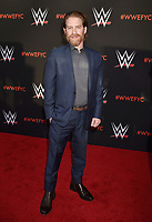 NORTH HOLLYWOOD, CA - JUNE 06: Seth Green attends WWE's first-ever Emmy 'For Your Consideration' event at Saban Media Center on June 6, 2018 in North Hollywood, California.<br /> CAP/ROT/TM<br /> &copy;TM/ROT/Capital Pictures