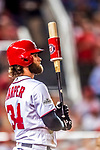 6 October 2017: Washington Nationals outfielder Bryce Harper takes practice swings on deck during the first game of the NLDS against the Chicago Cubs at Nationals Park in Washington, DC. The Cubs shut out the Nationals 3-0 to take a 1-0 lead in their best of five Postseason series. Mandatory Credit: Ed Wolfstein Photo *** RAW (NEF) Image File Available ***