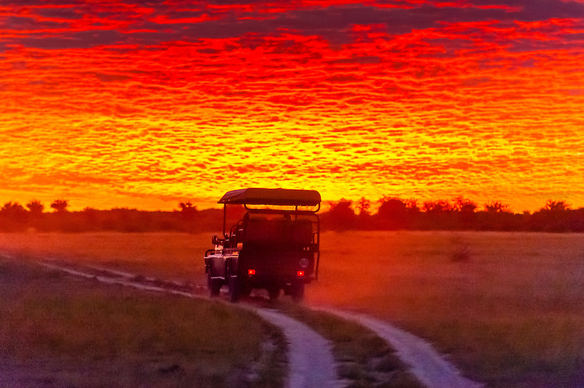 A safari vehicle starts a game drive at sunrise, Nxai Pan National Park, Botswana.