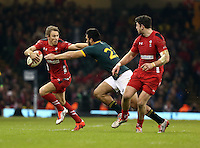 Pictured L-R: Liam Williams of Wales holds Damian de Allende away Saturday 29 November 2014<br />