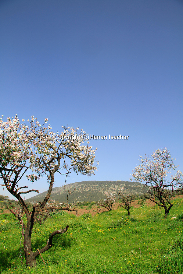 Israel, Mount Tabor overlooking Jezreel valley