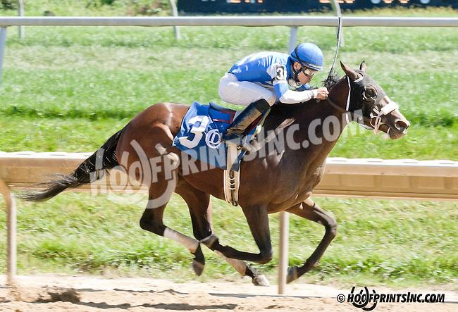 Virginia Rose winning at Delaware Park on 9/4/13