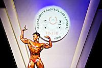 IFBB International Bodybuilding & Fitness Invitation Championship 2014