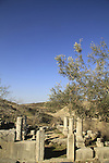 Israel, Upper Galilee, the ancient Synagogue of Gush Halav