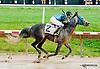 Thistle Deu winning at Delaware Park on 7/1/13