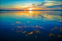 Sunset reflection on the calm water of Islamorada, Florida.