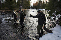 Beaver hunting. Åre, Sweden