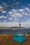 Crane and crate for unloading fish, Hanford Pier, Port San Luis, San Luis Obispo County, California