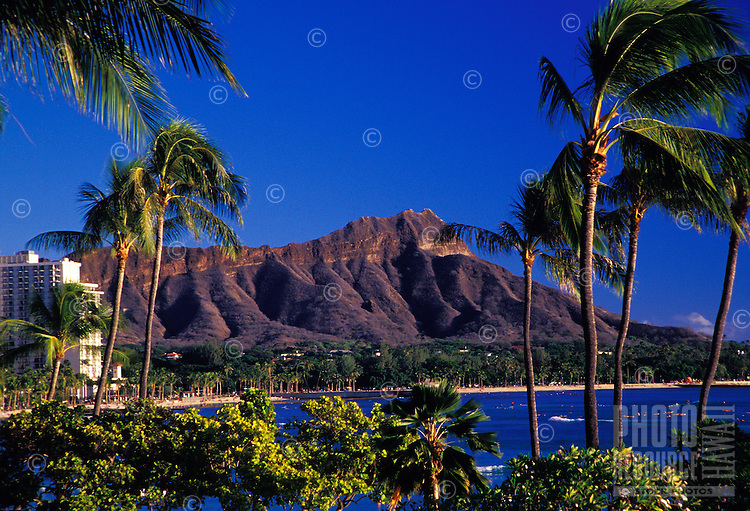 Diamond head with palm trees and ocean in the foreground