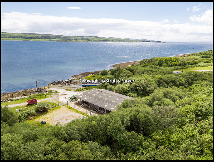 BNPS.co.uk (01202 558833)<br /> Pic:  Strutt&Parker/BNPS<br /> <br /> The farm building.<br /> <br /> A stunning Scottish island has emerged for sale for just £1.4million - the cost of a London terraced home.<br /> <br /> Inchmarnock, at the northern end of the Sound of Bute in the Firth of Clyde, is 2.5 miles long, half a mile wide and has 4.75miles of coastline.<br /> <br /> The 660 acre island has a fascinating history, having been a target of Viking raids and used as a D-Day training ground - with bomb craters still visible in its landscape.<br /> <br /> A farmer even discovered the remains of a local Bronze Age woman, the Queen of the Inch, on the island in the 1960s. She lay in a stone cist wearing a black lignite necklace and carrying a flint dagger.