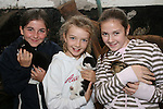 Clara Fry, Cliona Creaven and Niamh Kelly with the kittens at the Teddy Bears Picnic at Newgrange Farm...Photo NEWSFILE/Jenny Matthews.(Photo credit should read Jenny Matthews/NEWSFILE)....This Picture has been sent you under the condtions enclosed by:.Newsfile Ltd..The Studio,.Millmount Abbey,.Drogheda,.Co Meath..Ireland..Tel: +353(0)41-9871240.Fax: +353(0)41-9871260.GSM: +353(0)86-2500958.email: pictures@newsfile.ie.www.newsfile.ie.FTP: 193.120.102.198.