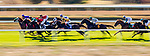 OCT 05: the field races in the Woodford Keeneland Select at Keeneland Racecourse, Kentucky on October 05, 2019. Evers/Eclipse Sportswire/CSM