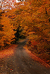 Winding country road, autumn, Lanark County, Ontario fall colour